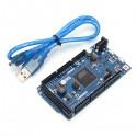Carte Due ARM 32-bit avec câble USB